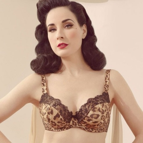 Soutien-gorge grande taille Animal Print Satin