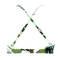 SEAFOLLY Maillot de bain triangle coques sans armatures Palm Beach Moss